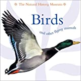 Birds and Other Flying Animals, Barbara Taylor, 1577689615
