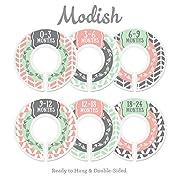 Modish Labels Baby Nursery Closet Dividers, Closet Organizers, Nursery Decor, Baby Girl, Woodland, Arrow, Tribal, Pink, Mint, Grey