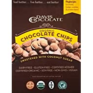 Organic Dark Chocolate Baking Chips made with Coconut Palm Sugar