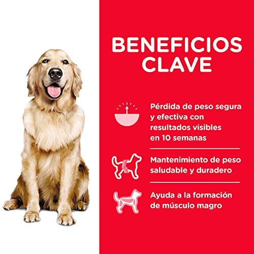Hill's Science Diet, Perfect Weight (Control de Peso) Alimento para Perros Adultos, Seco (Bulto) 12.9kg 5