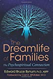 img - for The Dreamlife of Families: The Psychospiritual Connection book / textbook / text book
