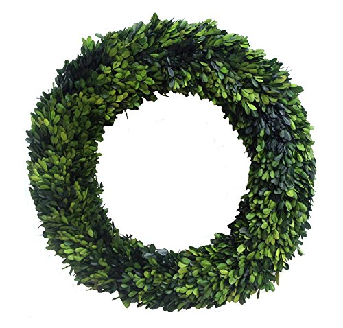Mills Floral Boxwood Country Manor Round Wreath, 24-Inch ()