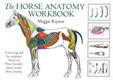 The Horse Anatomy Workbook: A Learning Aid for Stu...
