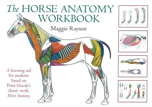 The Horse Anatomy Workbook: A Learning Aid for Students Based on Peter Goody's Classic Work, Horse Anatomy (Allen Student) (Horse Massage)