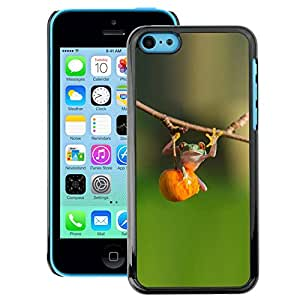 A-type Arte & diseño plástico duro Fundas Cover Cubre Hard Case Cover para iPhone 5C (Animal Cute Green Forest Fitness)