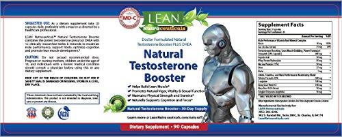 l arginine testosterone booster