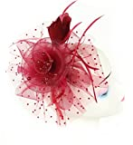 florida marry Womens Ladies Fascinators Hat Headband Clip for Cocktail Tea Party (Wine red)
