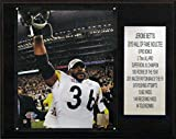 NFL Pittsburgh Steelers Jerome Bettis Pittsburgh Steelers Career Stat Plaque, 12 x 15-Inch