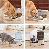 Automatic Cat Feeder and Water Dispenser in Set