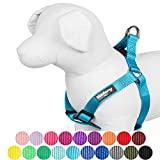 """Blueberry Pet 12 Colors Step-in Classic Dog Harness, Chest Girth 19.5"""" - 25.5"""", Medium Turquoise, S/M, Adjustable Harnesses for Dogs"""