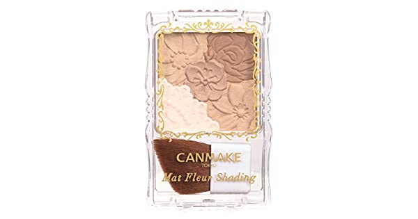 Amazon.com: canmake alfombrilla Fleur shanding 01 Natural ...