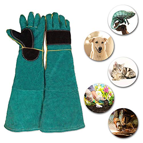 (YBB Animal Handling Anti-bite/scratch Gloves, Safe and Durable Gloves, Breathable Canvas Lining for Dog Cat Bird Snake Parrot Lizard Wild Animals Protection Gloves (Dark Green))