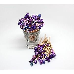 51BK1KIDUgL._SS300_ Top Rated Sets of Seashell Toothpicks