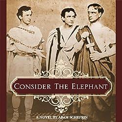 Consider the Elephant
