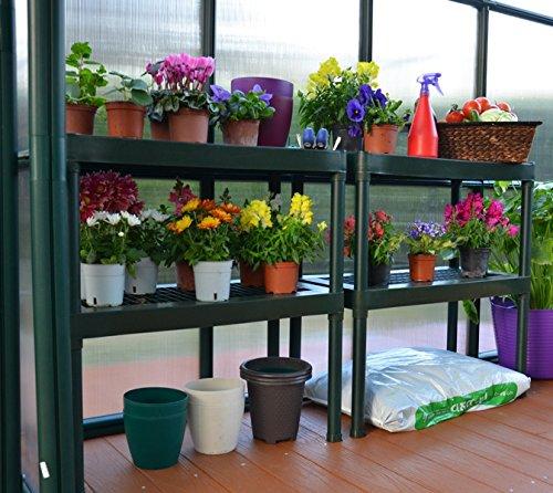Rion Pflanztisch Gewächshaus Gewächshausregal Gewächshaustisch grün mit 2 Etagen // 81x85 cm (BxH) // Pflanztisch aus Kunststoff