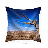 VROSELV Custom Cotton Linen Pillowcase Parched Tree in the Desert Landscape-Spain Almeria - Fabric Home Decor 16''x16''