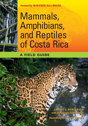 Mammals, Amphibians, and Reptiles of Costa Rica: A Field Guide (Corrie Herring Hooks Series) (Number Of Bird Species In Costa Rica)