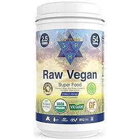 Raw-Vegan-Protein-Powder-40oz-1133g-25lb-Vanilla-54-Servings-Vegan-Meal-Replacement