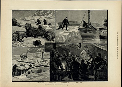 Eira Arctic Expedition Walrus Polar Bear Hunt 1882 great old print for display