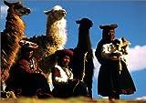 Herederos De Los Incas (Spanish Edition)