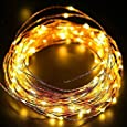 DesiDiya 3AA Battery Operated Copper String Decorative Fairy Lights Diwali Christmas Festival LED Fairy Lights (Warm White, 3 Meters, 30 LED's) (3 Meters)