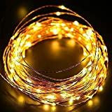DesiDiya® 3AA Battery Operated Copper String Decorative Fairy Lights Diwali Christmas Festival LED Fairy Lights (Warm White, 3 Meters, 30 LED's) (5 Meters)