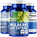 N1 Nutrition Advanced White Mulberry Leaf Extract 2500mg [Non-GMO, Gluten Free] All Natural Supplement for Blood Sugar Control and Weight Loss Support, 200 Veg Caps