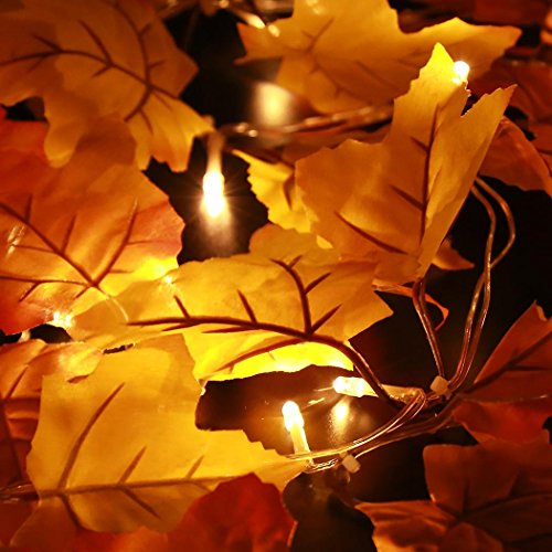 Thanksgiving Decorations Lighted Fall Garland, Thanksgiving Decor Halloween String Lights 8.2 Feet 20 LED, Thanksgiving Gift by Luditek (Image #3)