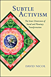 Subtle Activism: The Inner Dimension of Social and Planetary Transformation (SUNY series in Transpersonal and Humanistic Psychology)