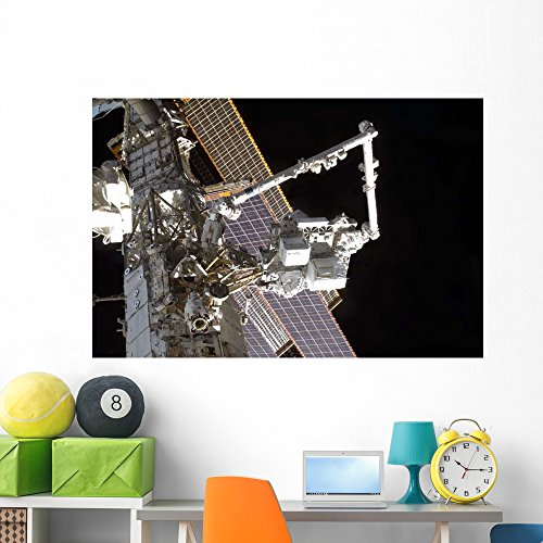 Canadarm2 Mates Express Logistics Wall Mural By Wallmonkeys Peel And Stick Outer Space Graphic  60 In W X 40 In H  Wm208482