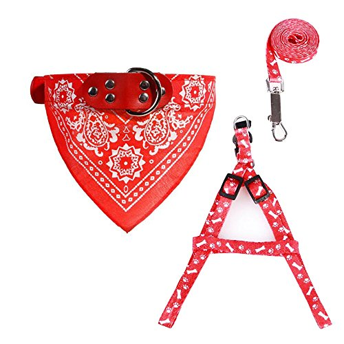 Kwan Cat Small Dog Puppy Harnesses Leash Traction Kit Bandana Scarf Leather Collar Harness Set (Red)