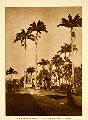 1924 Photogravure Basseterre Pall Mall Independence Square Saint Kitts YTMM4 - Original - Independence Mall