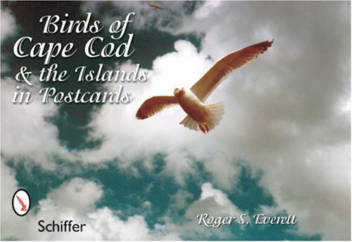 Birds Cape Cod (Birds of Cape Cod & the Islands in Postcards)