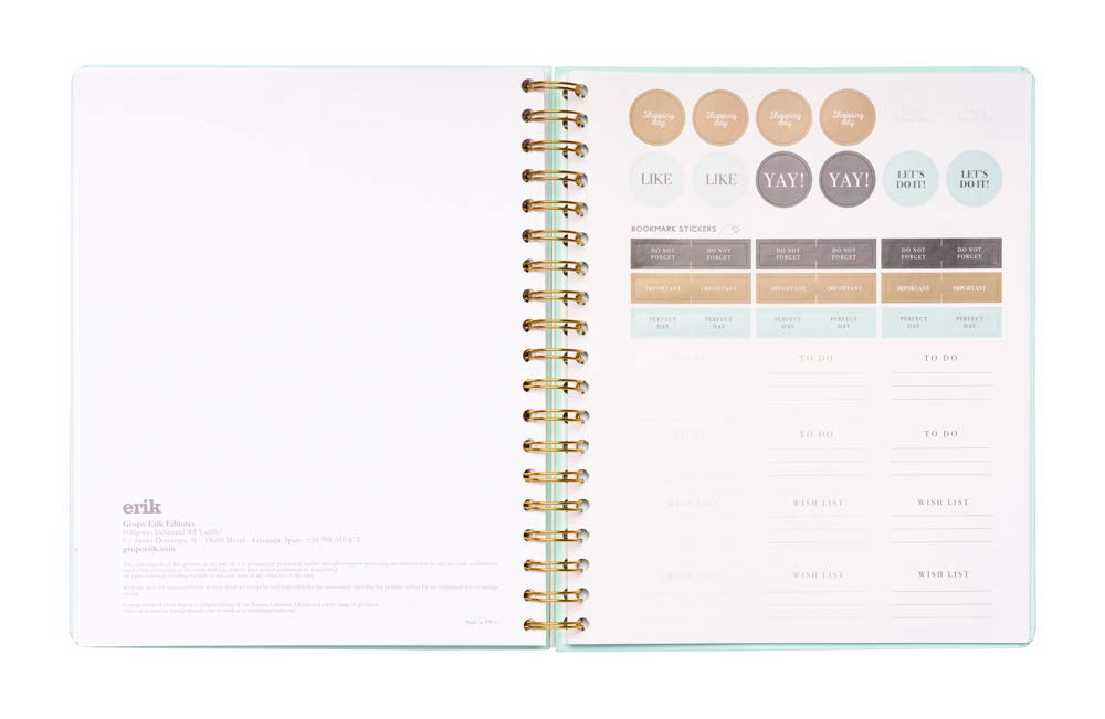 Amazon.com : Mint Weekly Planner, Planner for 2019-2020, 17 ...
