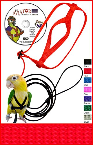 The AVIATOR Pet Bird Harness and Leash: Medium Red