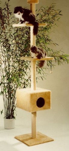 arbre a chat minka