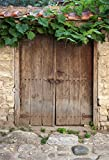 AOFOTO 7x10ft Chinese Style Wooden Frontdoor Background Grapevine Countryside Photography Backdrop Stone Wall Historical Ancient Kid Adult Artistic Portrait Photo Studio Props Video Drape Wallpaper