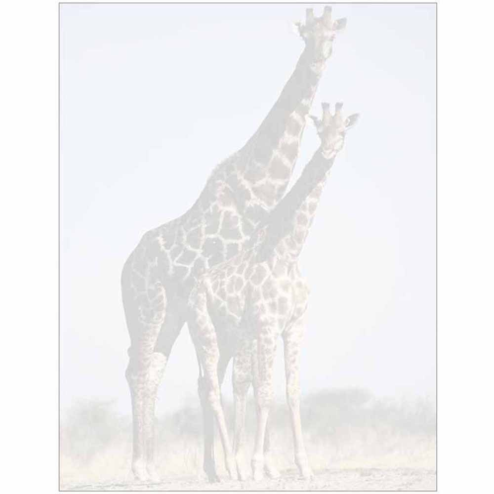 Faded Giraffe with Baby Letter Paper - Wildlife Animal Theme Design - Gift - Business - Office - Party - School Supplies