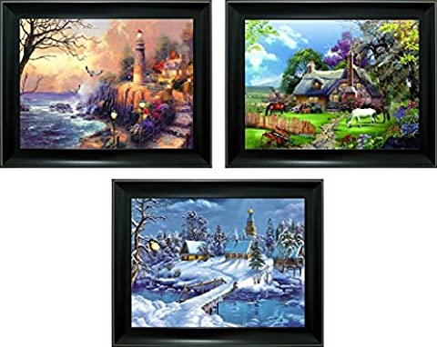 3D + 3 images in 1 Lenticular Framed 3d Picture Poster Artwork Wall Decor Holographic Pics Optical Illusion Animated Image ( 3 in 1 with Black Frame ) (Light - Frame One Light