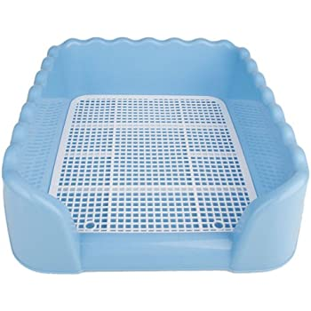 Amazoncom Favorite Dog Plastic Training Tray Potty High