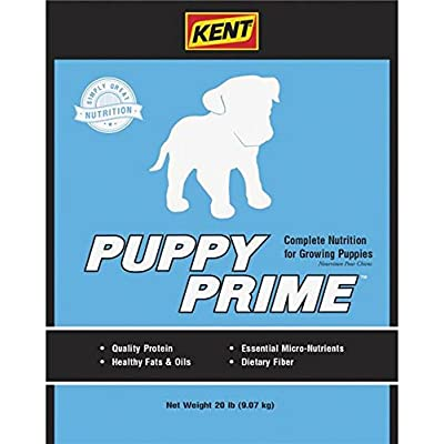 KENT Puppy Prime Dog Food