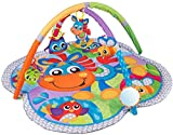 Best Playgro Activity Mats - Playgro 0186991 Clip Clop Activity Gym with Music Review