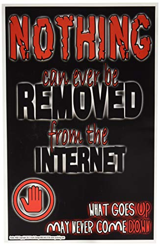 Youth Change Powerful Internet Cyber Safety, Social Media Poster for Classrooms and Schools - Poster - Media Board Poster