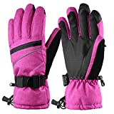Fazitrip Winter Gloves/Ski Gloves, Women's 3M Thinsulate Snow Warm Insulated Gloves Windproof Waterproof Gloves for Skiing, Snowboarding and Skating