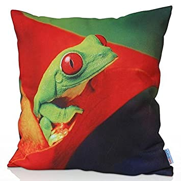Sunburst Outdoor Living Cojín Decorativo 45cm x 45cm Green Tree Frog Funda Cojín para Sillón, Sofá, Cama o Patio - Solo Funda, Sin Relleno: Amazon.es: Hogar