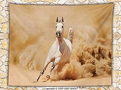 Animal Decor Fleece Throw Blanket Arabian Horse Breed Running Out of the Desert Storm Sand High Tail Creature Nature Photo Throw Cream White
