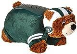 NFL Dream Lite Pillow Pet