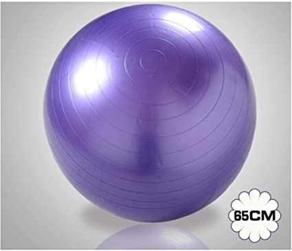 Pelota Suiza Gym Ball 65CM Pelota Pilates Fitness Yoga Ball ...