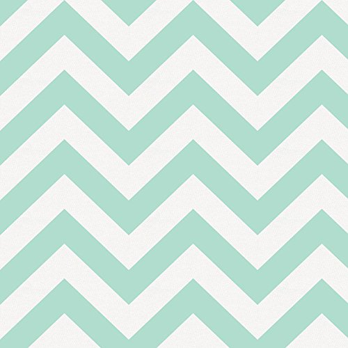 Carousel Designs Mint Chevron Fabric by the Yard - Organic 100% Cotton -