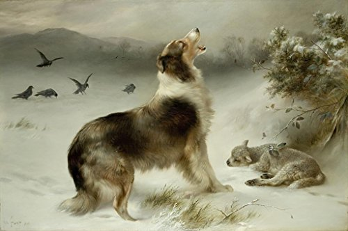 Print Collie Dog - Found Collie Dog & Lamb Print By Walter Hunt